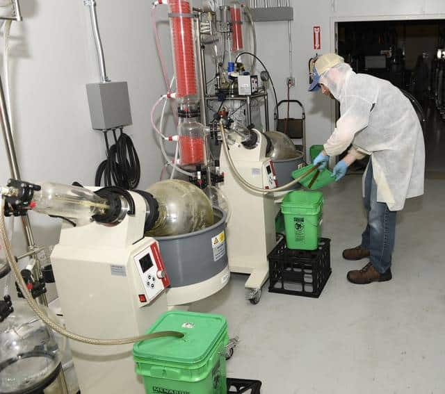 man doing hemp extraction processes in the lab