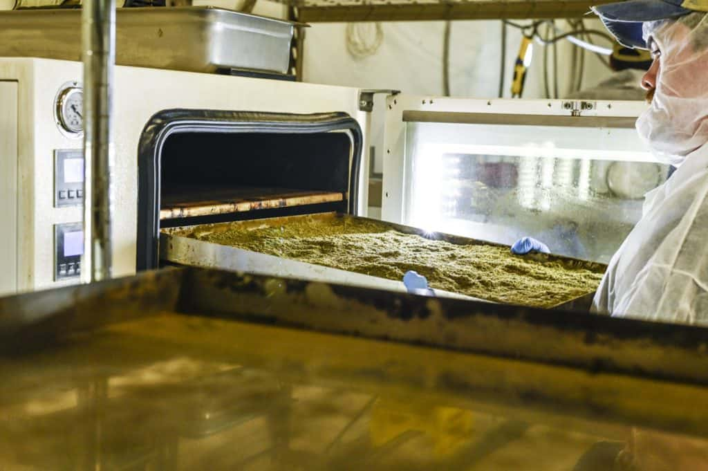 worker using decarb ovens