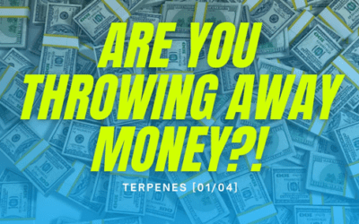 Are You Throwing Money Away | Podcast